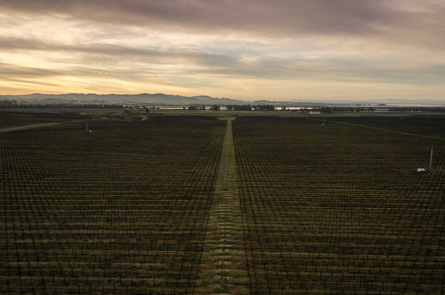 Commercial kite aerial photography by Jason Tinacci, Napa, CA